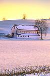 White barn in winter, Union County, Pennsylvania