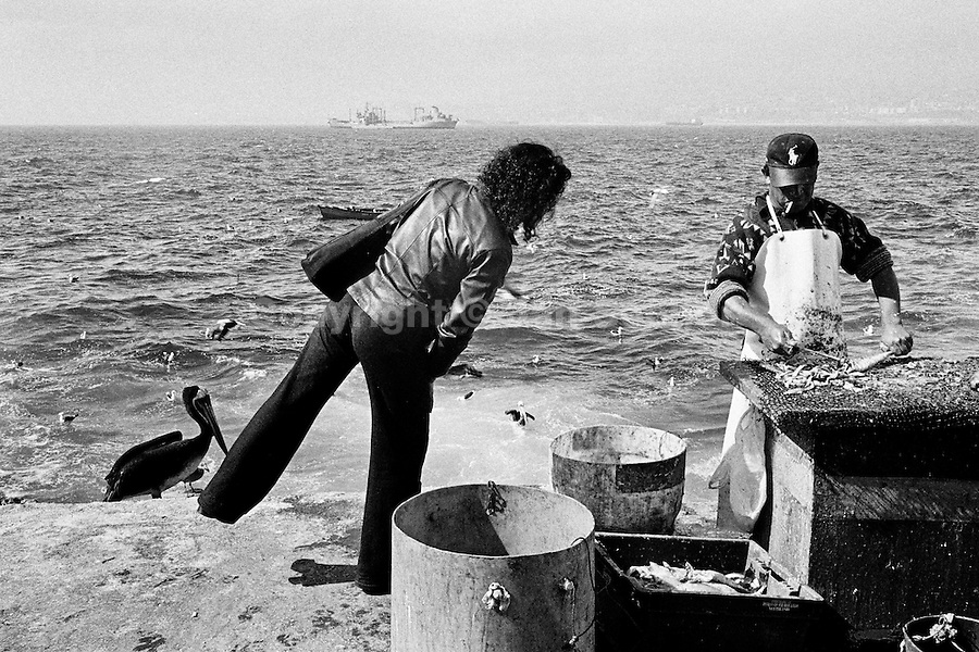 A Chilean woman looks for a fish to buy at caleta Membrillo, in the port of Valparaíso, Chile, 28 April 2002.