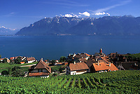 Switzerland, Vaud, Lavaux, Lake Geneva, Scenic view of an excursion steamer boat cruising along the lakeshore of Lac Leman from the steep slopes of the vineyards of Lavaux in the Canton of Vaud. View of the Alps.