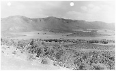 Mancos Project #283 looking south from Mancos airport.  RGS right-of-way is in trees.<br /> RGS  Mancos, CO  Taken by USGS, Staff - 5/24/1946