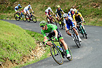 The peloton including Green Jersey Marcel Kittel (GER) Quick-Step Floors during Stage 9 of the 104th edition of the Tour de France 2017, running 181.5km from Nantua to Chambery, France. 9th July 2017.<br /> Picture: ASO/Alex Broadway | Cyclefile<br /> <br /> <br /> All photos usage must carry mandatory copyright credit (&copy; Cyclefile | ASO/Alex Broadway)
