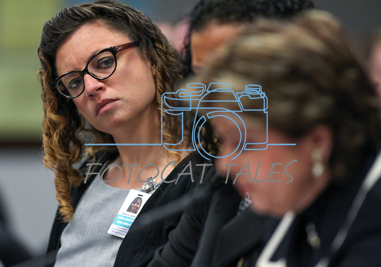 Domestic violence lobbyist Kristy Oriol listens as attorney Gloria Allred testifies in a committee hearing at the Legislative Building in Carson City, Nev., on Friday, March 13, 2015. <br /> Photo by Cathleen Allison
