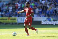 Liverpool's Georginio Wijnaldum during the game <br /> <br /> Photographer Ian Cook/CameraSport<br /> <br /> The Premier League - Cardiff City v Liverpool - Sunday 21st April 2019 - Cardiff City Stadium - Cardiff<br /> <br /> World Copyright © 2019 CameraSport. All rights reserved. 43 Linden Ave. Countesthorpe. Leicester. England. LE8 5PG - Tel: +44 (0) 116 277 4147 - admin@camerasport.com - www.camerasport.com
