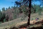 Hikers, Kamiak Butte, Whitman County, Eastern Washington State, Pacific Northwest, County Park, Washington Wildlife Recreation Program grant,.
