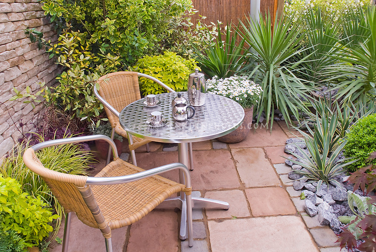 Patio and garden furniture in small enclosed outdoor room with plants, succulents, shrubs, mostly foliage, with container of flowers, table and chairs, tea set, coffee. Design: Geoff Whiten