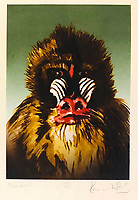 BNPS.co.uk (01202 558833)<br /> Pic: OmegaAuctions/BNPS<br /> <br /> PICTURED: The collection is all Rock n Roll, here's a painting of a Mandrill<br /> <br /> A huge collection of artwork by legendary Rolling Stones singer Ronnie Wood has emerged for sale for a whopping £25,000.<br /> <br /> The group of 49 prints have been created by the 72-year-old rocker over a number of years and depict a host of famous faces.<br /> <br /> Among the celebrities to be given the artist's treatment are the likes of Mohammed Ali, Elvis Presley and even his own bandmates.