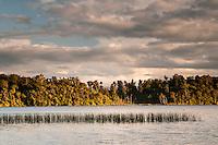 Sunset at Lake Mahinapua near Hokitika, West Coast, Westland, New Zealand