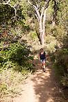 Woman walking through woodland trees Sierra Morena mountains, Sierra de Aracena, Huelva province, Spain