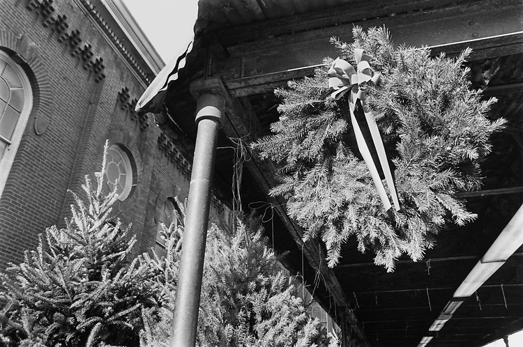 Eastern market Christmas trees and wreaths on Dec. 13, 1993. (Photo by Laura Patterson/CQ Roll Call via Getty Images)