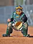 15 April 2008: University of Vermont Catamounts' catcher Jason Leclerc, a Freshman from Chicopee, MA, warms up a relief pitcher during a game against the Dartmouth College Big Green at Historic Centennial Field in Burlington, Vermont. The Catamounts rallied from a 7-3 deficit going into the bottom of the ninth, to tie and then win in the tenth: 8-7 over Dartmouth in a non-conference NCAA game...Mandatory Photo Credit: Ed Wolfstein Photo