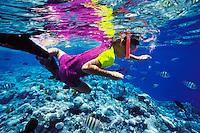 &copy; Dale Sanders<br /> Model Release<br /> Underwater View of Boy Snorkeling<br /> Palau, Micronesia