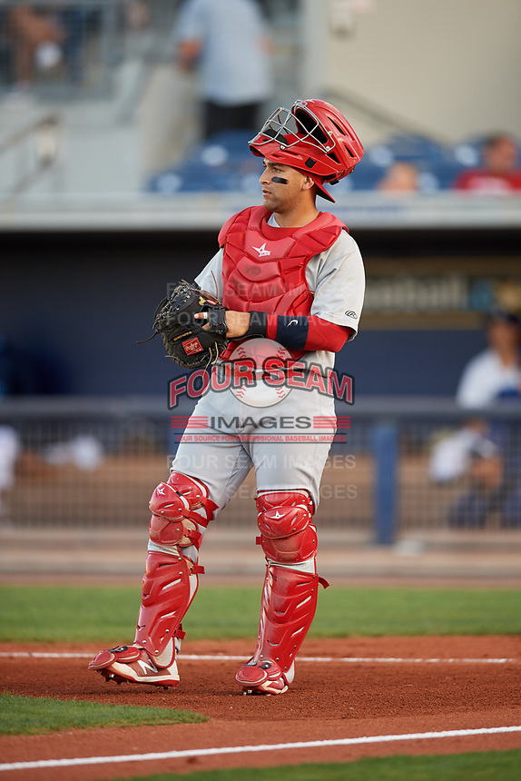 Palm Beach Cardinals catcher Jose Godoy (27) during a game against the Charlotte Stone Crabs on April 20, 2018 at Charlotte Sports Park in Port Charlotte, Florida.  Charlotte defeated Palm Beach 4-3.  (Mike Janes/Four Seam Images)
