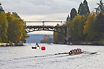 Rowing, Head of the Lake Regatta, November 2 2014, Seattle, Gonzaga University  crew, Women's 3JV 8+, Washington State, Lake Washington Rowing Club, Lake Washington Ship Canal, Montlake Cut,