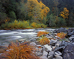 Siskiyou National Forest, OR  <br /> Grasses and water worn rocks along the Elk River flowing thru the autumn forest of the <br /> Grassy Knob Wilderness