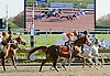 Golden Odessy winning The Delaware Park Arabian Juvenile Filly Championship (Gr 2) on 11/1/11