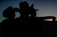 Rodeo 20mayo2018