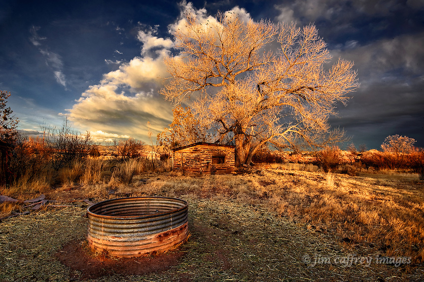 Image of a stock tank, an old masonry outbuilding, and a cottonwood tree at sunset