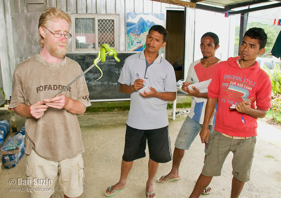 British herpetologist Mark O'Shea holds a Sunda Island pitviper, Cryptelytrops insularis. Looking on are Timorese students Benny Carvalho, Laca Ribeira, and Zito Soares. Bakhita Mission, near Eraulo, Ermera District, Timor-Leste (East Timor)