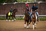 LOUISVILLE, KY - MAY 02: Promises Fulfilled gallops in preparation for the Kentucky Derby at Churchill Downs on May 2, 2018 in Louisville, Kentucky. (Photo by Alex Evers/Eclipse Sportswire/Getty Images)