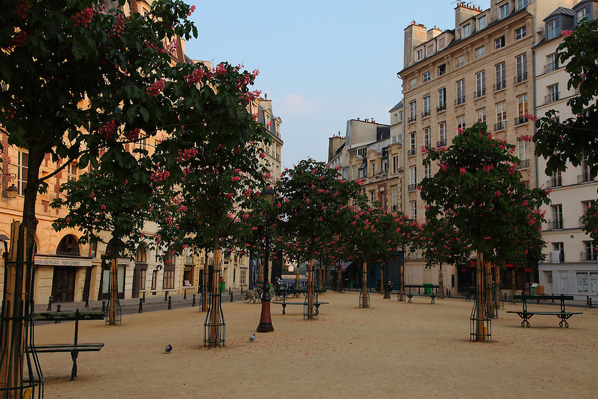 A view of Place Dauphine in Paris from the center of its triangular garden, with the trees and the benches, surrounded by the typical buildings. Digitally Improved Photo.