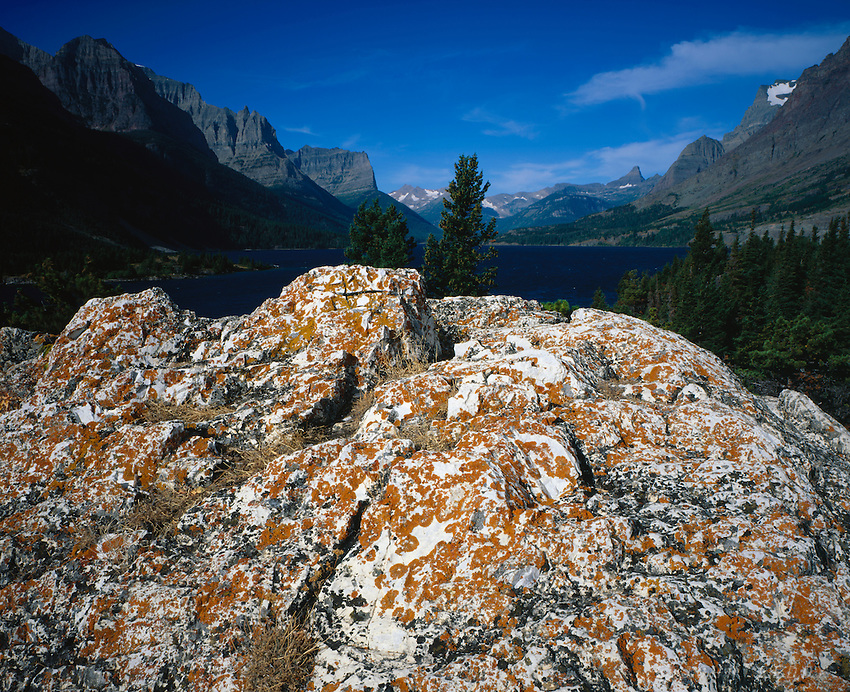 Lichen on rock and St. Mary Lake,GLACIER NATIONAL PARK, Montana