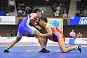 Wrestling : Meiji Cup All Japan Invitational Wrestling Championships 2017