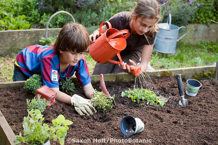 Holt 997 061 cr2 photobotanic stock photography garden for Gardening with children