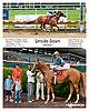 Upside Down winning at Delaware Park on 7/8/13