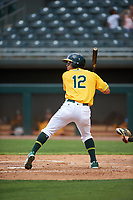 AZL Athletics Gold Yhoelnys Gonzalez (12) at bat during an Arizona League game against the AZL Giants Black on July 12, 2019 at Hohokam Stadium in Mesa, Arizona. The AZL Giants Black defeated the AZL Athletics Gold 9-7. (Zachary Lucy/Four Seam Images)