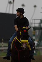 Trinninberg coming off the track at Santa Anita Park in Arcadia California