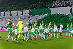 10.02.2019, Weser Stadion, Bremen, GER, 1.FBL, Werder Bremen vs FC Augsburg, <br /> <br /> DFL REGULATIONS PROHIBIT ANY USE OF PHOTOGRAPHS AS IMAGE SEQUENCES AND/OR QUASI-VIDEO.<br /> <br />  im Bild<br /> <br /> Einlauf der Mannschaft im sondertrikot <br /> <br /> Foto © nordphoto / Kokenge