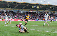 Jack Clifford scores a try, Harlequins v Cardiff Blues in a European Challenge Cup match at Twickenham Stoop, Twickenham, London, England, on 17th January 2016