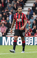 Bournemouth's Callum Wilson<br /> <br /> Photographer David Horton/CameraSport<br /> <br /> The Premier League - Bournemouth v West Ham United - Saturday 28th September 2019 - Vitality Stadium - Bournemouth<br /> <br /> World Copyright © 2019 CameraSport. All rights reserved. 43 Linden Ave. Countesthorpe. Leicester. England. LE8 5PG - Tel: +44 (0) 116 277 4147 - admin@camerasport.com - www.camerasport.com