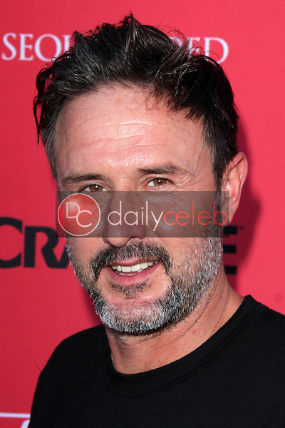 David Arquette<br />