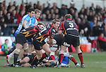 Dragons scrum half Wayne Evans.<br /> RaboPro 12<br /> Newport Gwent Dragons v Connacht<br /> Rodney Parade<br /> 23.03.14<br /> <br /> &copy;Steve Pope-SPORTINGWALES