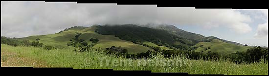 Mt. Diablo and fog<br />
