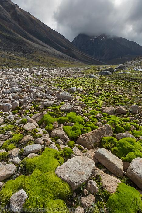 Tupik creek, Brooks Range, Gates of the Arctic National Park, Alaska