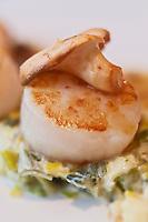 Europe/France/Nord-Pas-de-Calais/59/Nord/ Dunkerque: Saint-Jacques à la compotée de poireaux recette de téphane Pruvot  Restaurant: L' Atelier de Steff