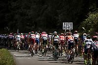 Peloton climbing. <br /> <br /> Stage 5: Lorient &gt; Quimper (203km)<br /> <br /> 105th Tour de France 2018<br /> &copy;kramon