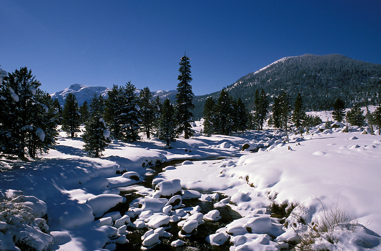 California, Lake Tahoe.  Winter stream near Lake Tahoe.  Photo cataho110.  Photo copyright Lee Foster, 510/549-2202, lee@fostertravel.com, www.fostertravel.com