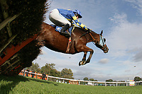 Go Amwell (2) ridden by Timmy Murphy jumps the last in the Frimstone Handicap Hurdle