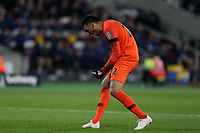 Paulo Gazzaniga of Tottenham Hotspur /celebrates Son Heung-Min of Tottenham Hotspur scoring the opening goal during West Ham United vs Tottenham Hotspur, Caraboa Cup Football at The London Stadium on 31st October 2018