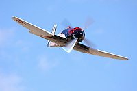 """Piloted by Shuttle Astronaut Robert """"Hoot"""" Gibson the Hawker Sea Fury Race 99, """"Riff Raff,"""" flies down the """"Valley of Speed"""" during an Unlimited Class heat race at the 2009 Reno National Championship Air Races."""