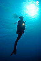 Diver shining torch by sunlight, underwater view (Licence this image exclusively with Getty: http://www.gettyimages.com/detail/95574877 )