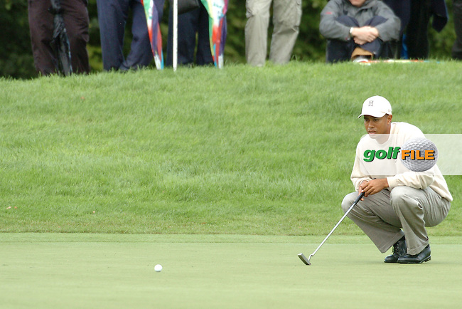 THOMASTOWN, IRELAND. Tiger Woods of the USA examines his putt on the 7th hole during the American Express Championship day two at the Mount Juliet Golf Club on October 1th, 2004 in Thomastown, Ireland ..Photo AFP/NEWSFILE/FRAN CAFFREY..(Photo credit should read FRAN CAFFREY/NEWSFILE/AFP)...This Picture has been sent you under the condtions enclosed by:.Newsfile Ltd..the Studio,.Millmount Abbey,.Drogheda,.Co Meath..Ireland..Tel: +353(0)41-9871240.Fax: +353(0)41-9871260.GSM: +353(0)86-2500958.email: pictures@newsfile.ie.www.newsfile.ie.FTP: 193.120.102.198..This picture is from Fran Caffrey@newsfile.ie