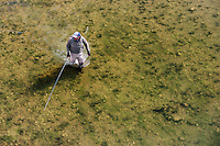 A fly-fisherman wades a stream in northern Montana.