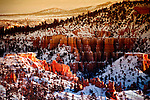 As viewed from Sunrise Point, the northern section of Bryce Canyon National Park, Utah boasts the largest concentration of hoodoos in the world.  Thin, protruding spires of rock, hoodoos have been formed over thousands of years by water, wind, ice, and gravity.