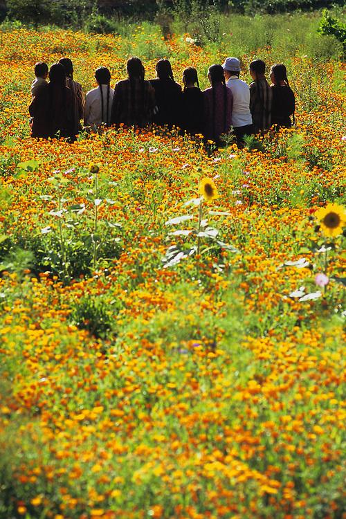 Gathering, Qinghai, China, 2007