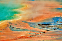 Bacterial Mats provide a vivid accent to Grand Prismatic Sprin in the Midway Geyser Basin of Yellowstone National Park.
