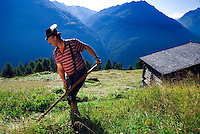 Soelden, Oetztal, Tyrol, Austria, August 2009. A farmer mows the grass by hand on the Gampe Alm at 2000 meter. A valley full of opposites, between action and relaxation. Lush green meadows and mighty rocks. White waters and eternal ice. Photo by Frits Meyst/Adventure4ever.com